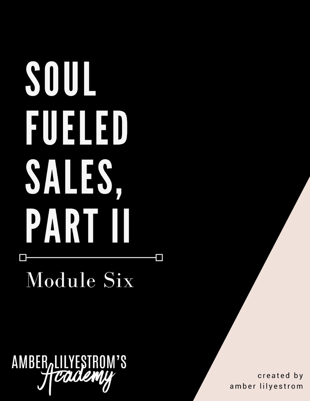 Soul Fueled CEO Academy Module Six - Soul Fueled Sales, Part II.jpg