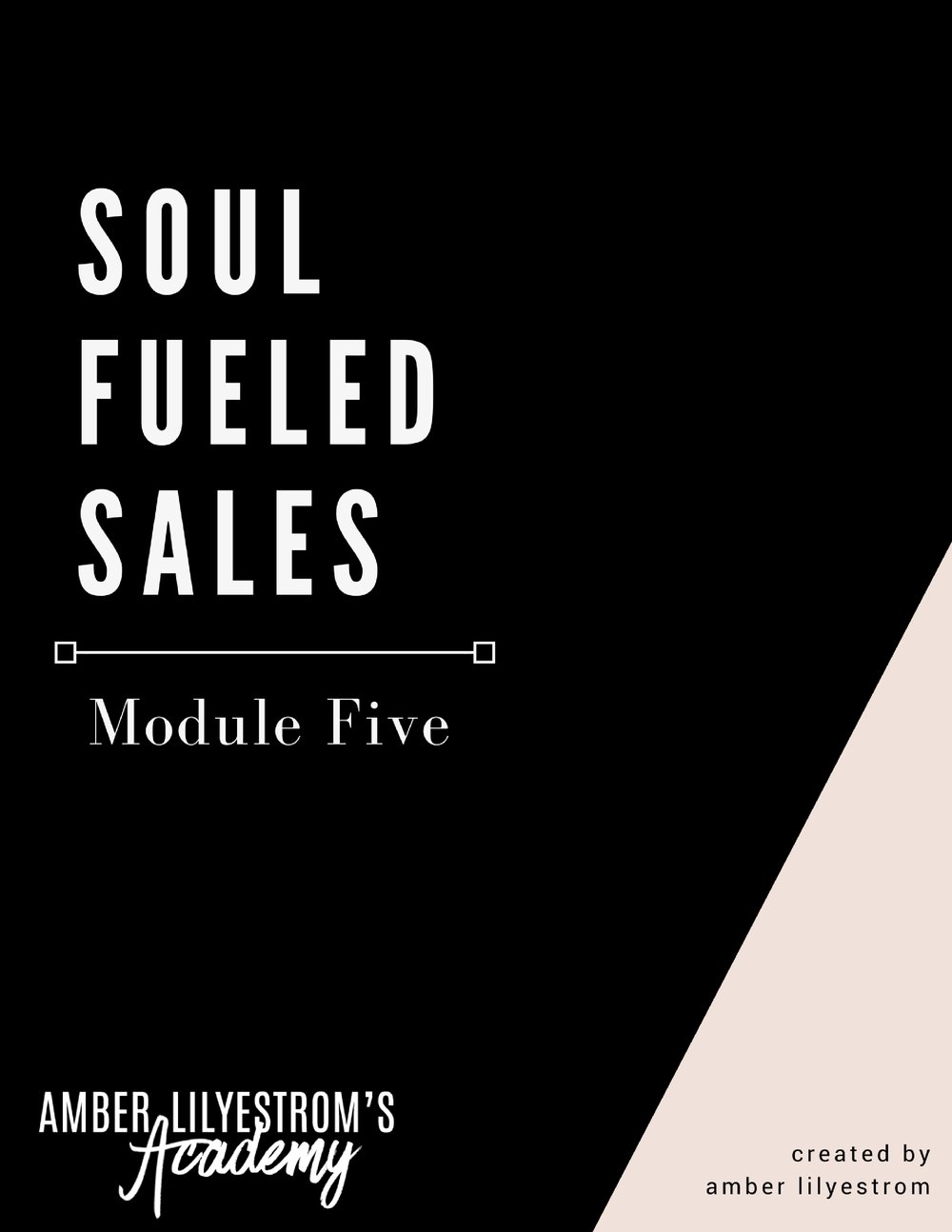 Soul Fueled CEO Academy Module Five.jpg