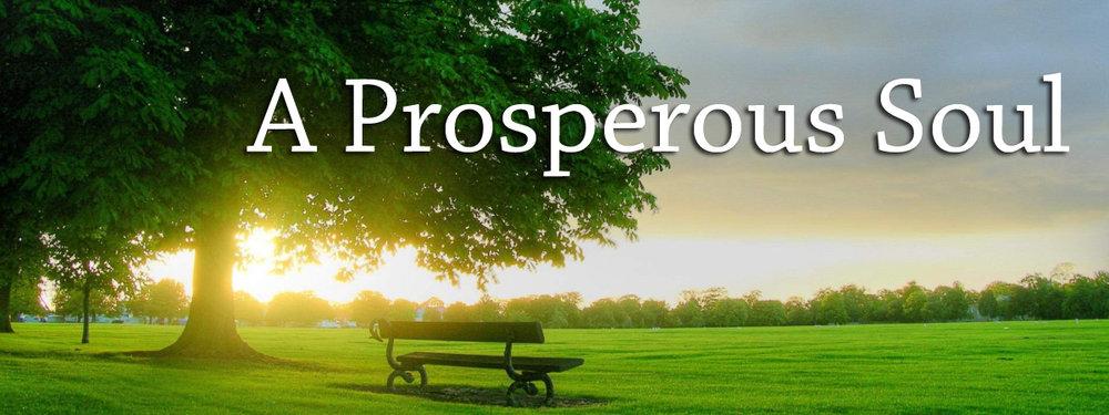 Prosperous Soul Banner copy.jpg