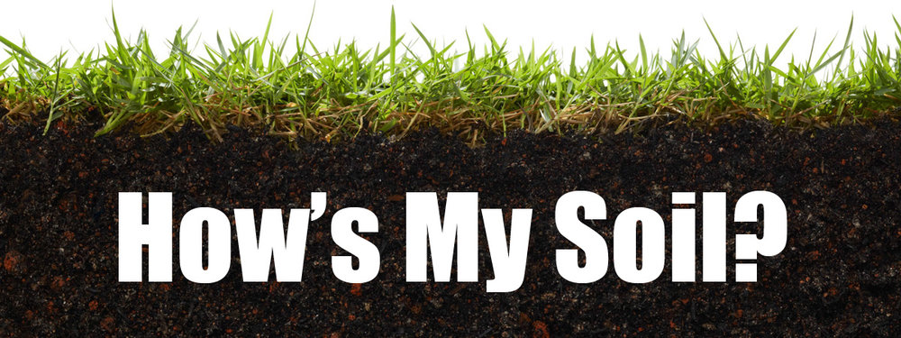How's My Soil.jpg
