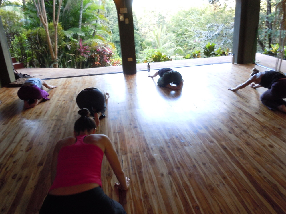 Taking a grounding moment as I begin my very first class in the glorious Treetops studio.