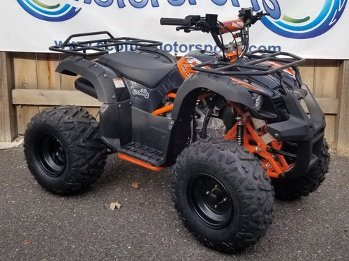 Kids Atv For Sale >> Ecofun Motorsports Minnesota S Top Scooter Shop Kayo Bull 125 Youth