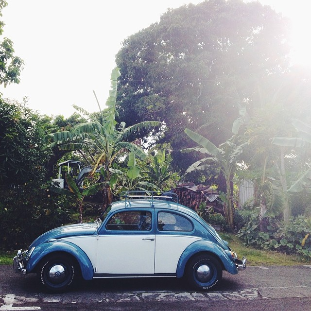 #hawaii #bug #mytinyatlas #kalapana #bigisland #vscocam #vw #tropical (at Kalapana Beach)