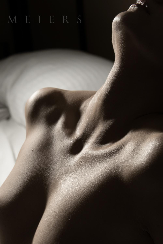 Bodyscape Art Nude Meiers-3.jpg