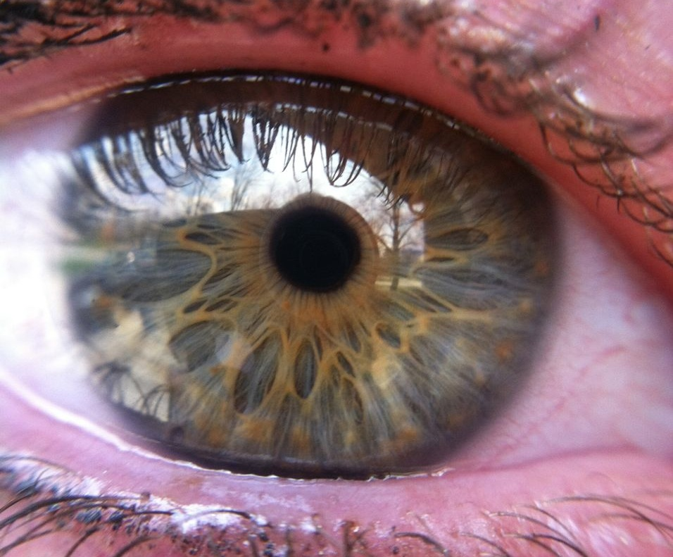 This is the eye of my lovely friend Emily. Stunning.
