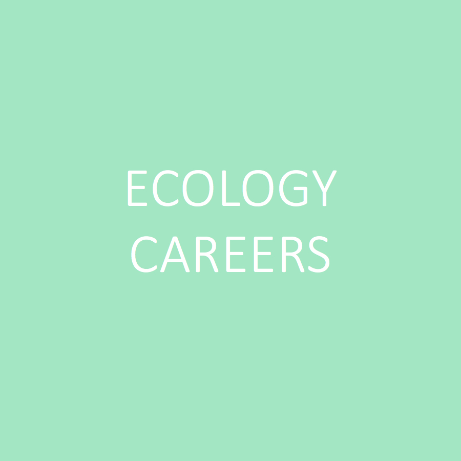 esa_website_buttons_ecocareers.jpg