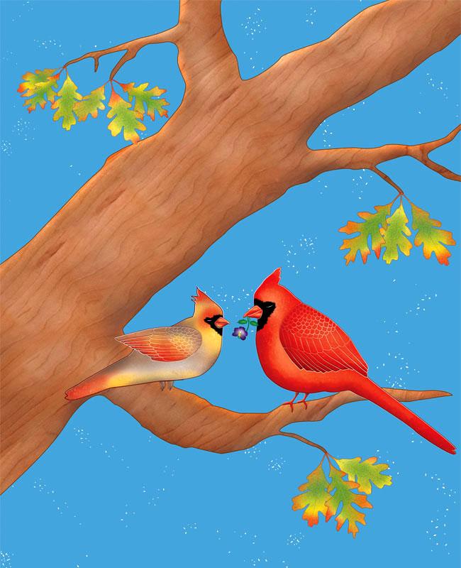il-cardinal-web.jpg