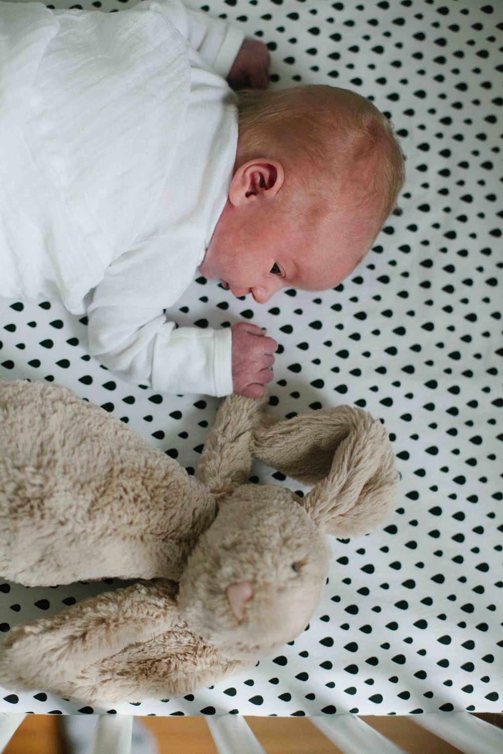 minneapolis newborn lifestyle photographer