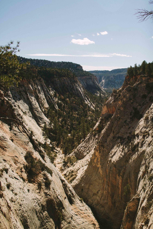 zion national park jolly gulch utah