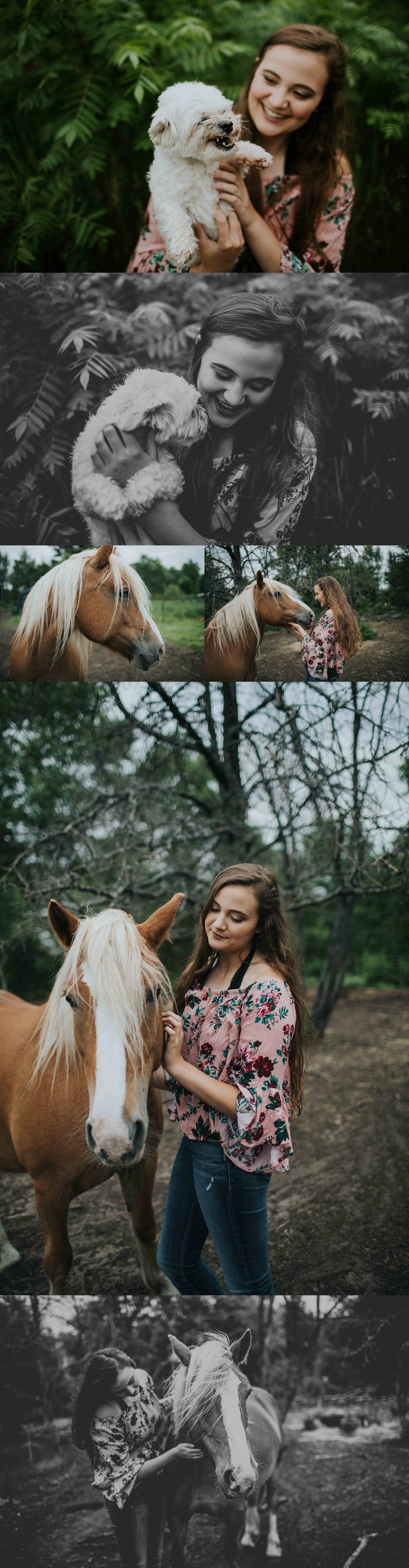 Wisconsin Senior Photographer Wisconsin Rapids Madison Chloe Ann Photography Senior Pictures with dogs and horses
