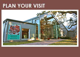 Walter Anderson Museum Click on photo to visit WAMA website.