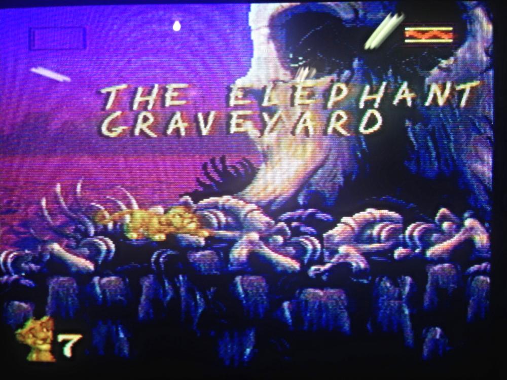 elephant_graveyard
