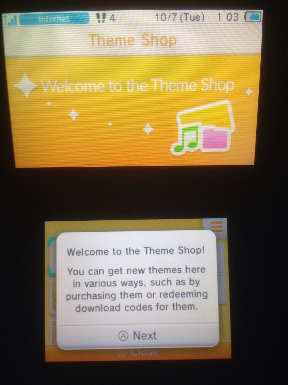 I wonder if some games will come with special codes for custom themes...
