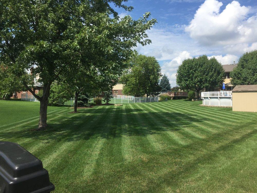 Love the Lawn.JPG