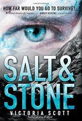 salt-stone.jpg
