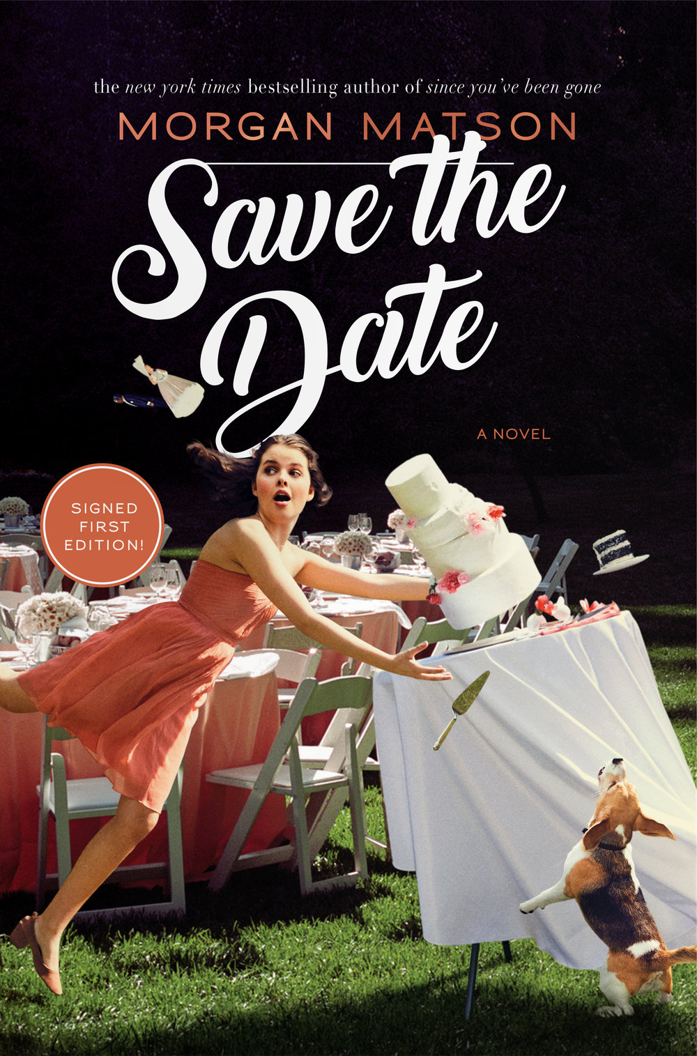 morgan-matson-save-the-date.jpg