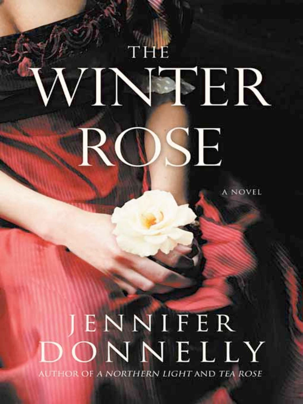 donnelly-winter-rose.jpg