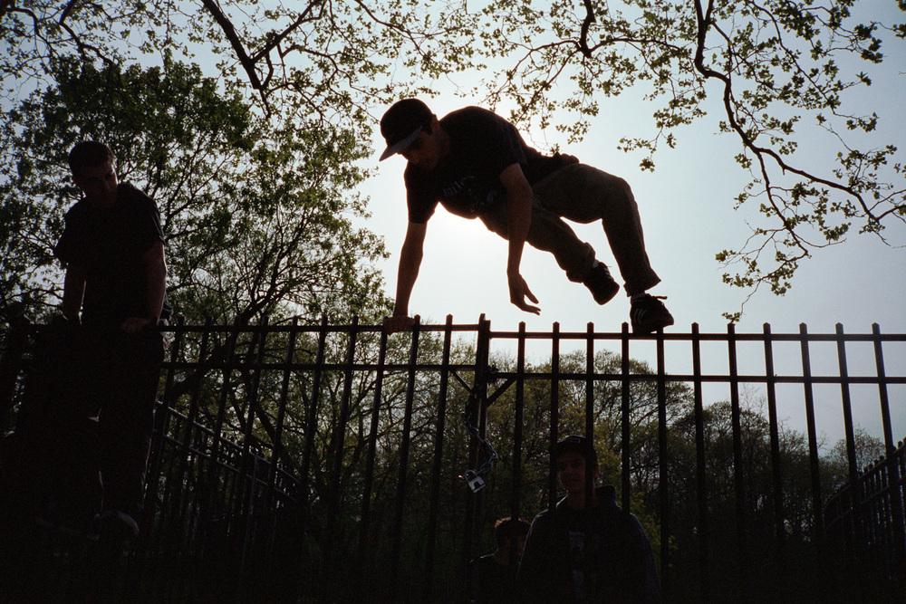 fence_hop_owls_head_5400.jpg
