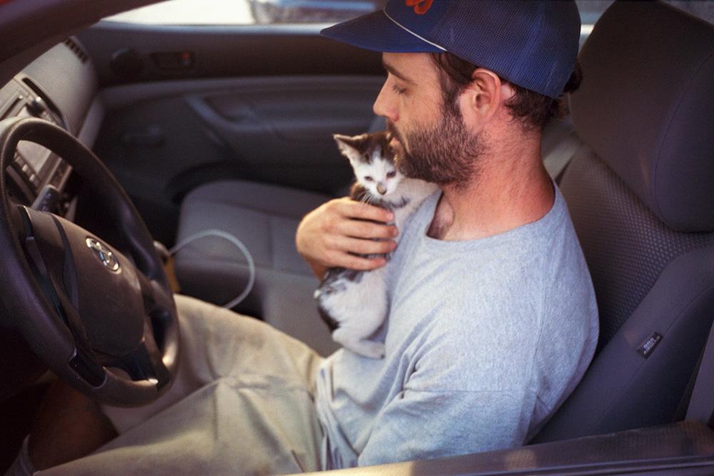 andrew_new_cat.jpg