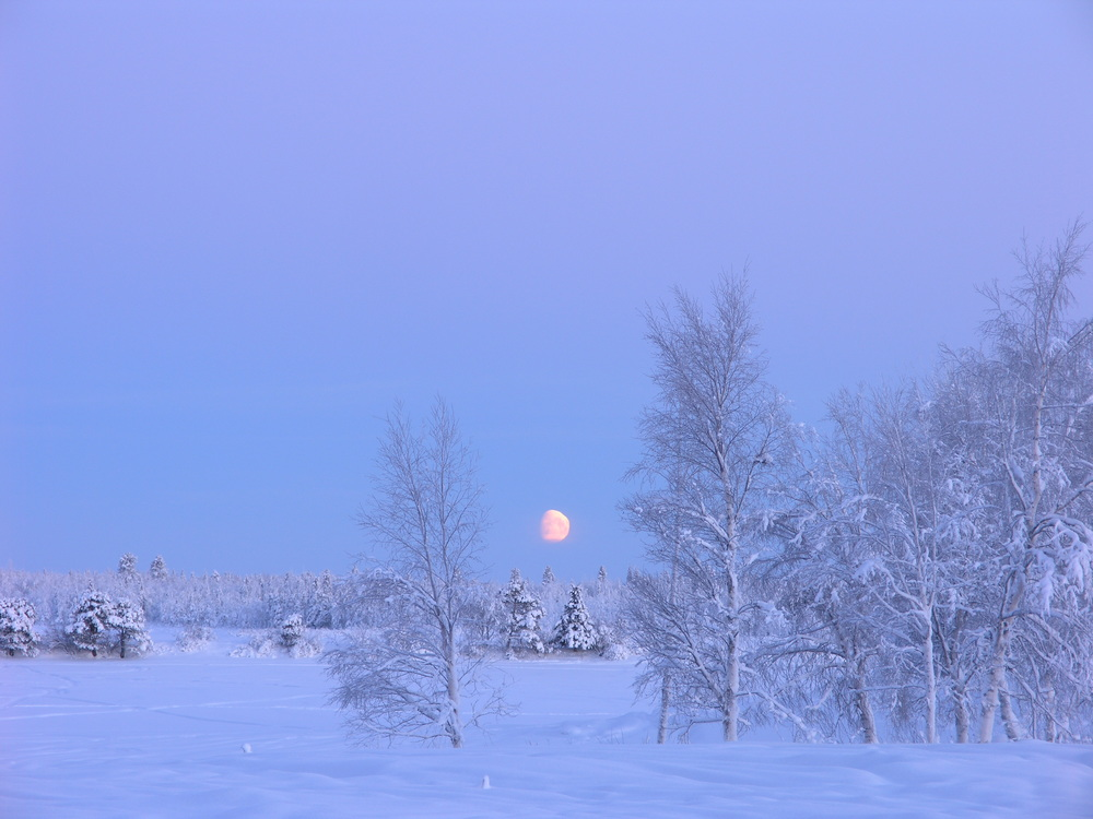 December, Moonlit Day