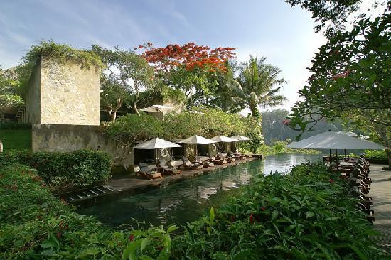 maya-ubud-resort-spa.jpg
