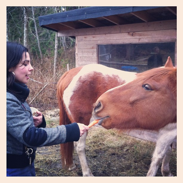 At Robin's farm. (Taken with instagram)