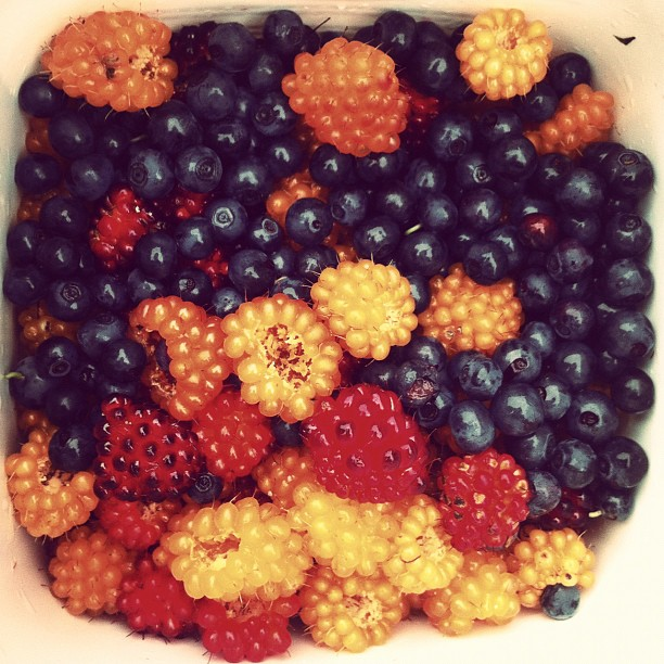 Berries from Lynn Canyon… Pie tonight (Taken with Instagram)