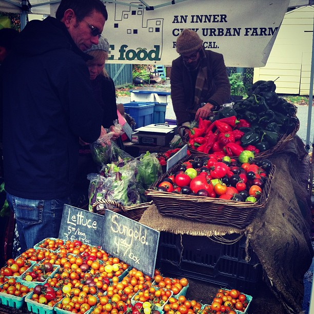 SOLE Food: An Inner City Urban Farm (at Trout Lake Farmers Market)