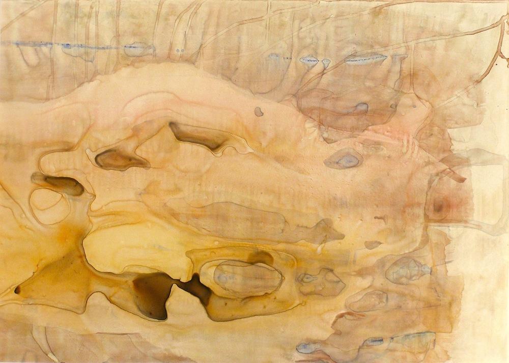 "Shell, 2012   Acrylic on Yupo, 20"" x 28"""