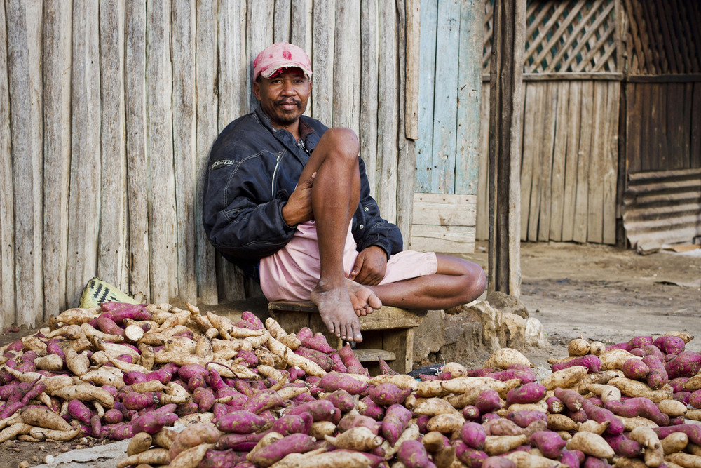 Cassava is a staple food in the south of Madagascar. Beside the roads, there are many people selling it, such as this man.