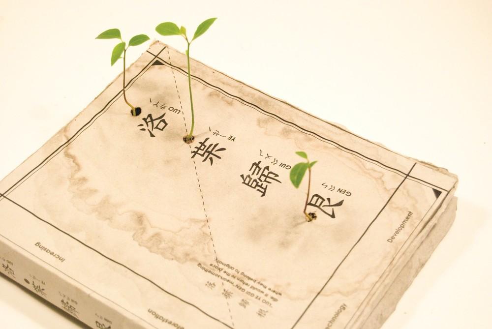 種子書4.jpg