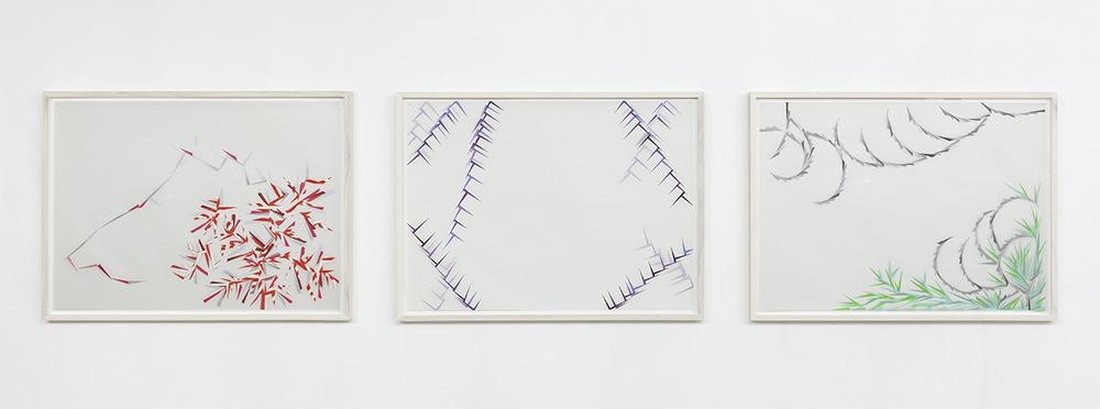 Still Lifes, Sometimes Repeated / Lisa Blas  Installation view, Rossicontemporary, Brussels, 2012