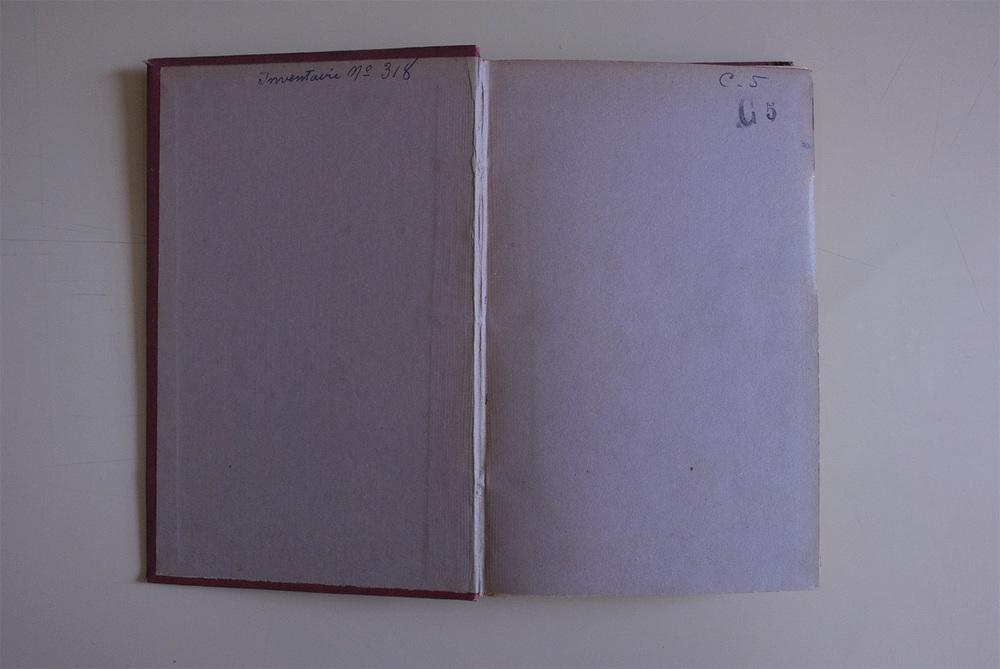 Lavender mist, la double  Lightjet print 27 x 40 centimeters 2011