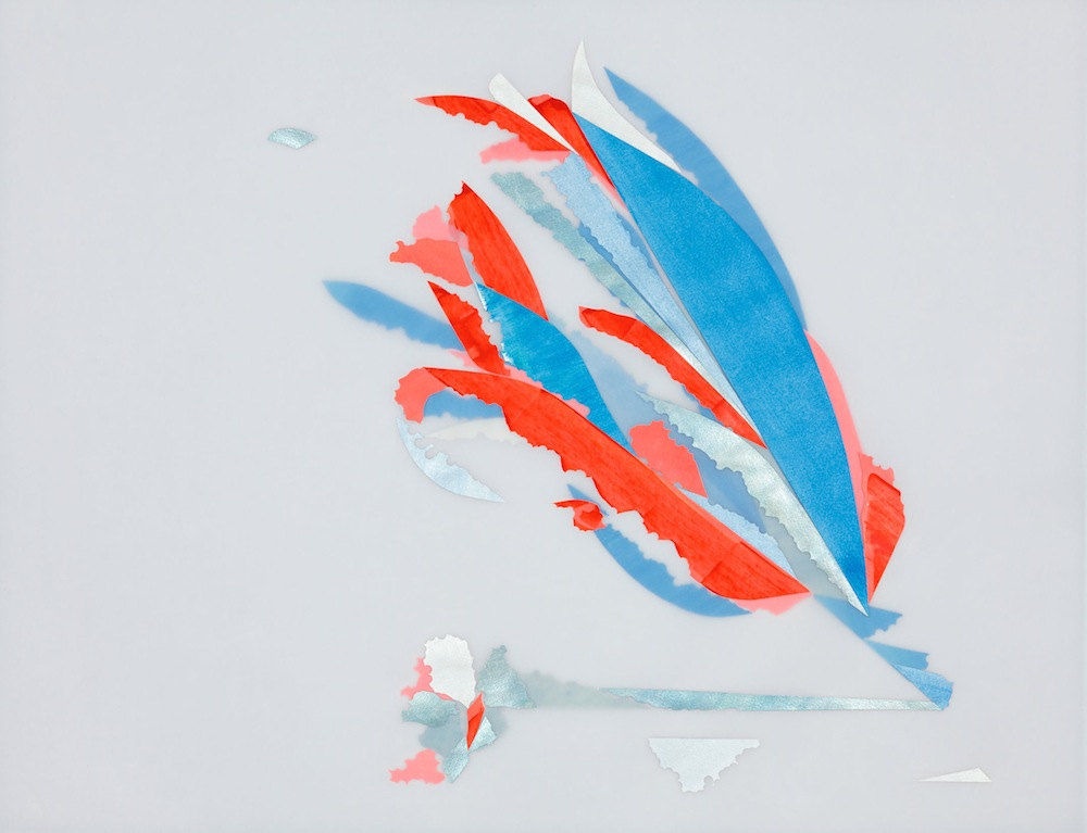Red and Blue, after Anna Atkins (Charleston)  Acrylic on Watercolor paper on Opalux vellum 19.5 x 25.5 inches