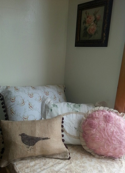 bird and pillows.jpg