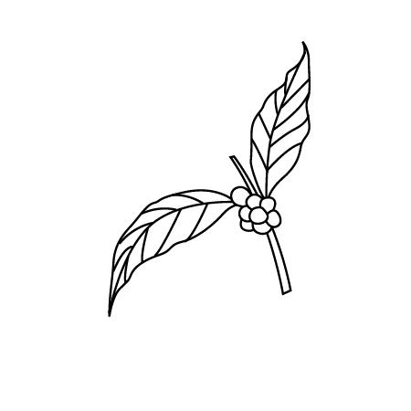 coffee branch