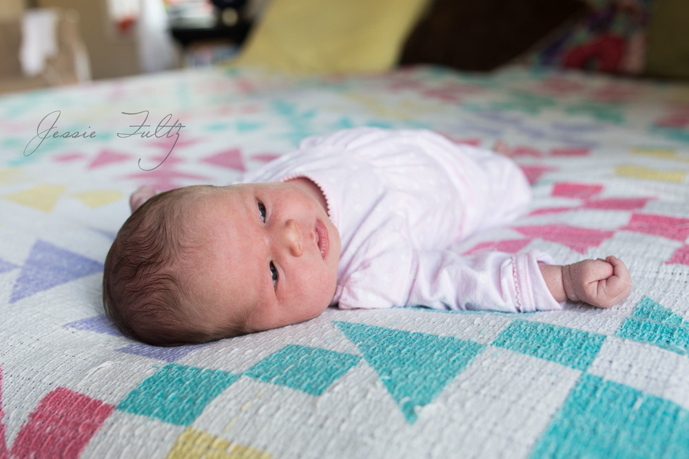 asheville-newborn-photographer