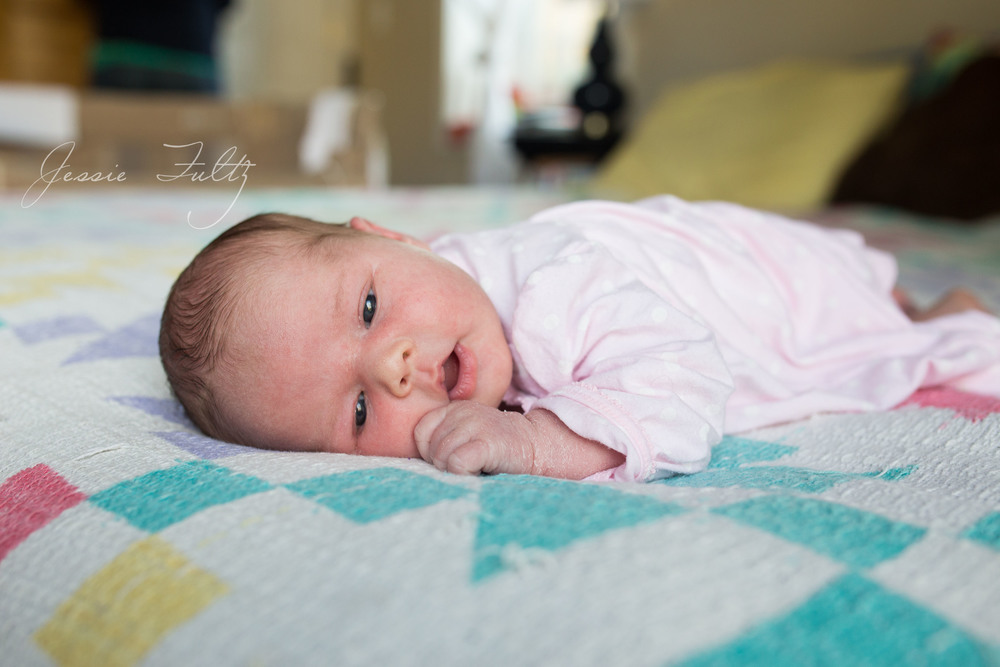 asheville-newborn-photos