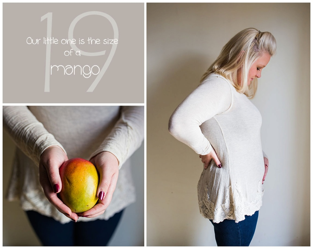 hendersonville pregnancy photography