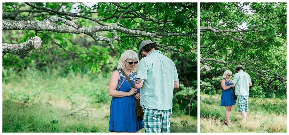 hendersonville proposal photographer