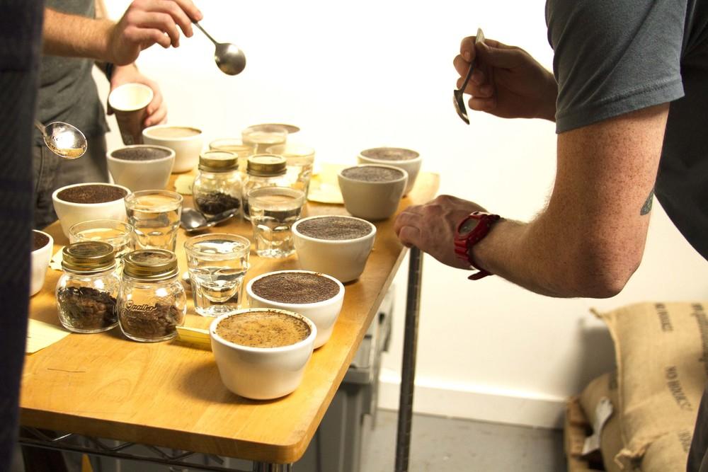 cuppingacion.jpg
