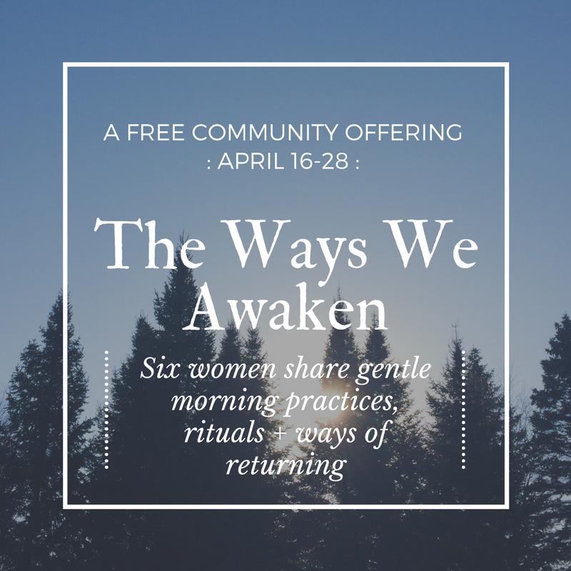 The Ways We Awaken promo image (2).png