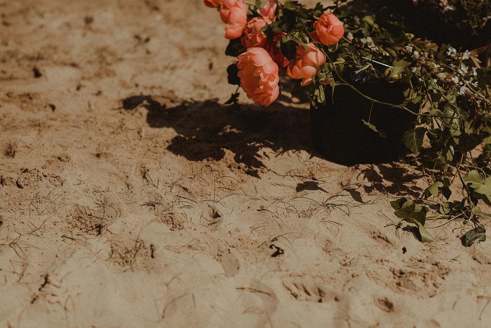 031-NikkiLeadbetter-HarvestMoon-AlexLouise.jpg