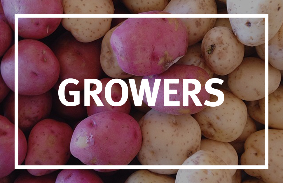 Meet our local growers. Each one takes time to cultivate their quality products.