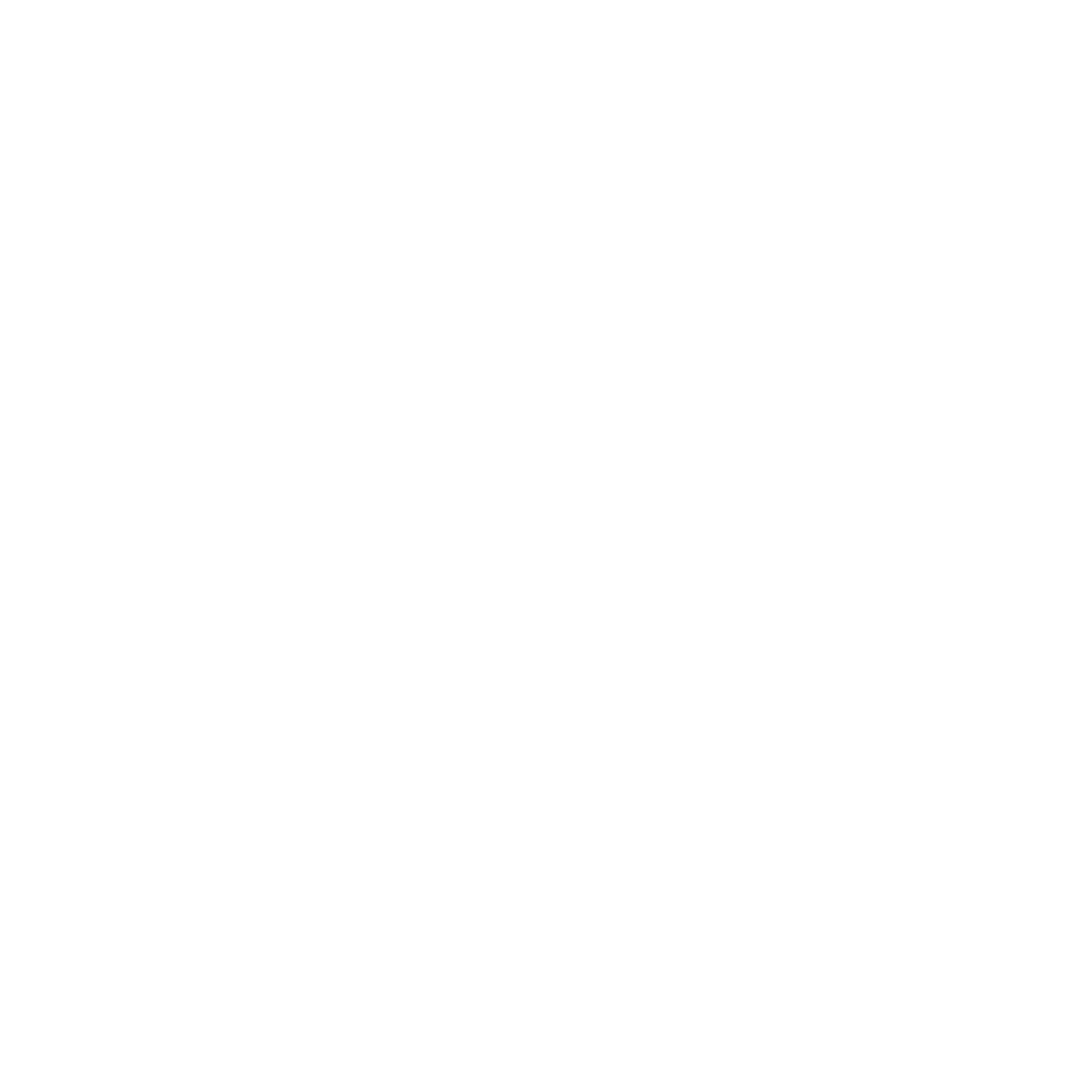 SpinunityW (1).png
