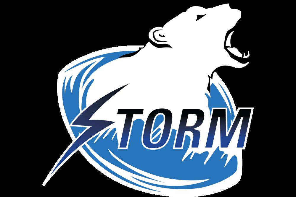 stormbear_transp 32.png