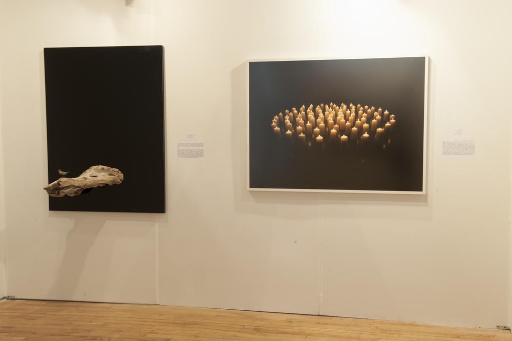 Artecho Obras by Romina Hendlin-5.jpg