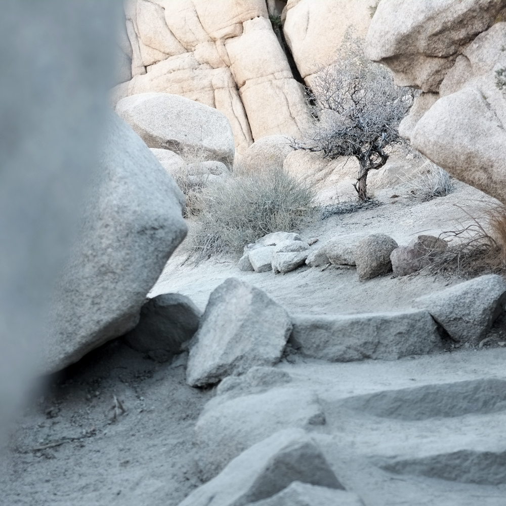 HIDDEN VALLEY, JOSHUA TREE