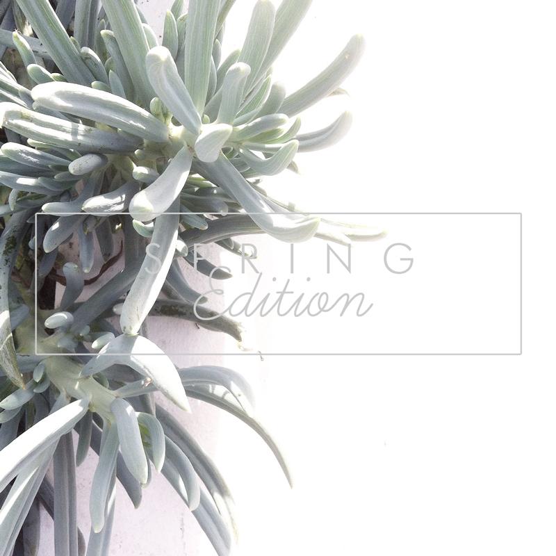 AZULIE-spring-edition.jpg