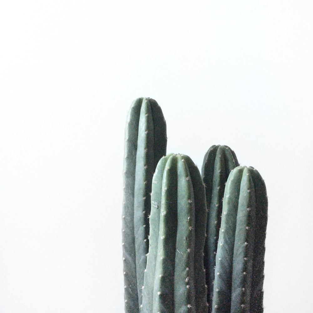 Azulie | Meditation 5